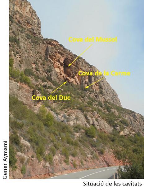 foto Cova dels Ducs