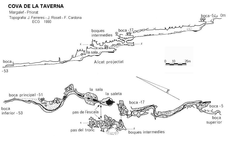 topo Cova de la Taverna