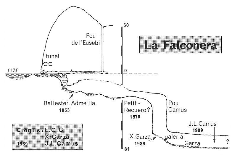 topo la Falconera
