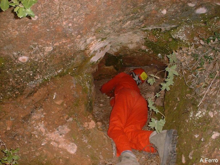 foto Cova dels Toixons