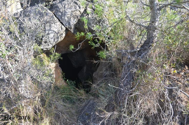 foto Cova del Manyé