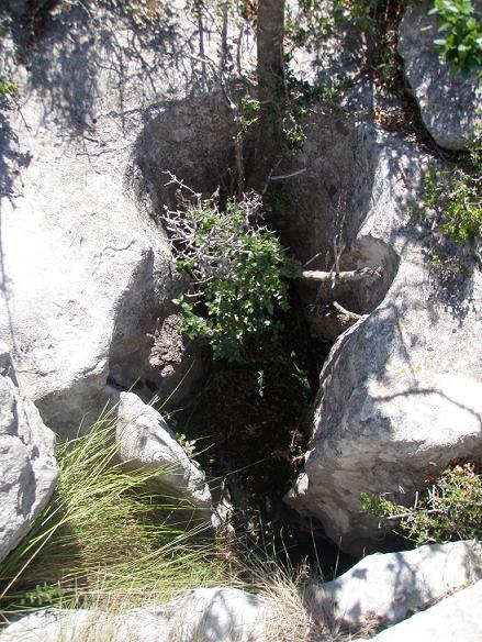 foto Avenc Sm-9 del Serrat de la Morella