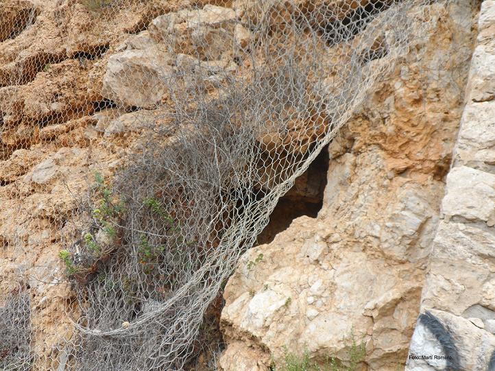 foto Cova de la Punta Grossa
