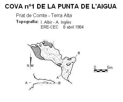 topo Cova Nº1 de la Punta de l'aigua