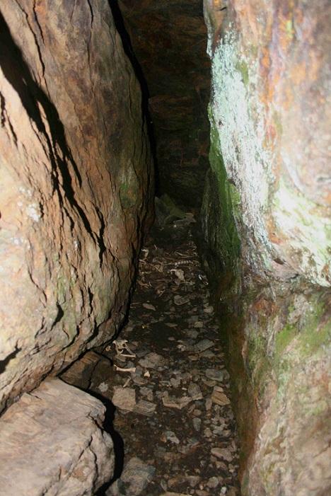 foto Cova Serra Plana