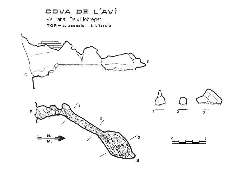 topo Cova de l'Avi