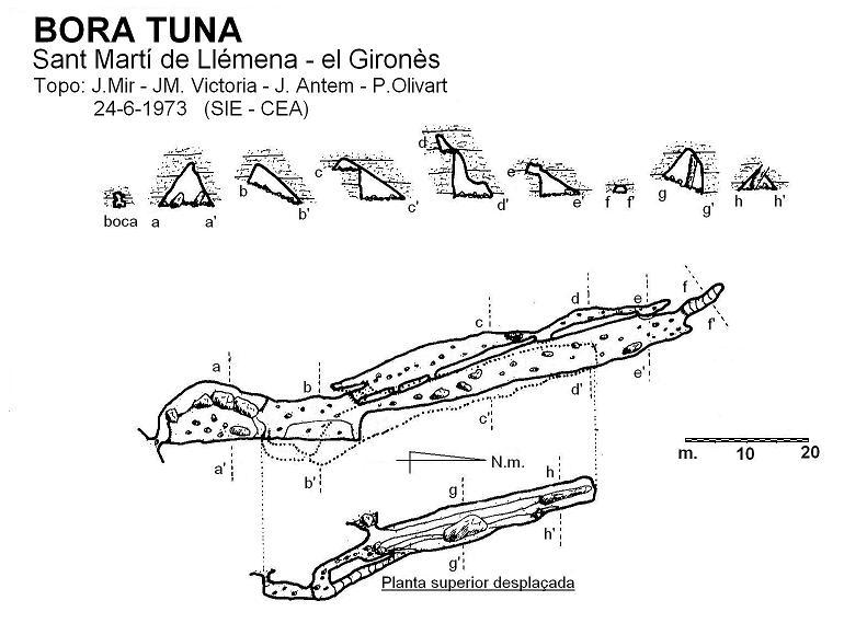 topo Bora Tuna