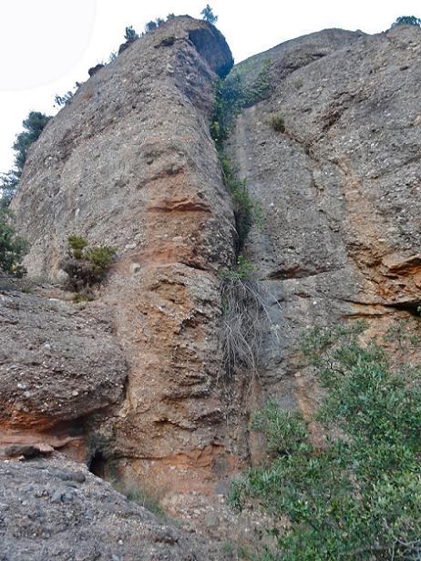 foto Cova de les Ginesteres