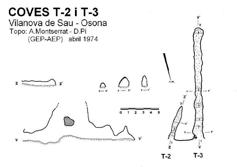 topo Cova T-2 de les Grioteres