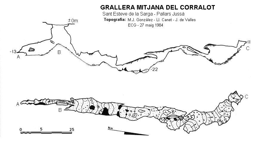 topo Grallera Mitjana del Corralot