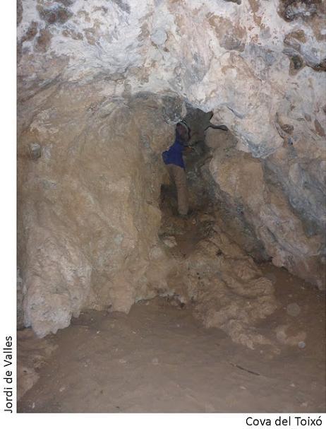 foto Cova del Toixó