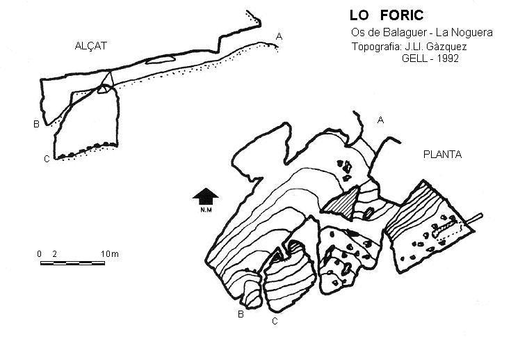 topo Lo Foric