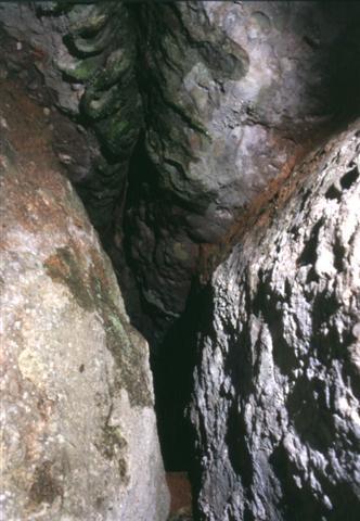 foto Cova de Castellassa del Dalmau