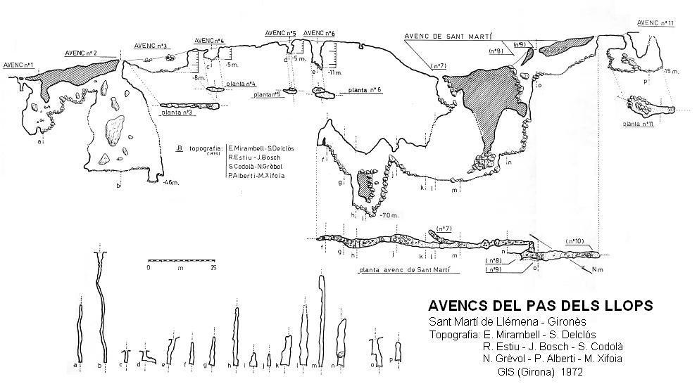 topo Avencs Nº1 I 2 del Pas dels Llops