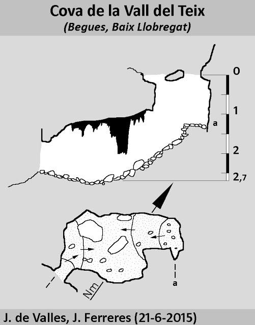 topo Cova de la Vall del Teix