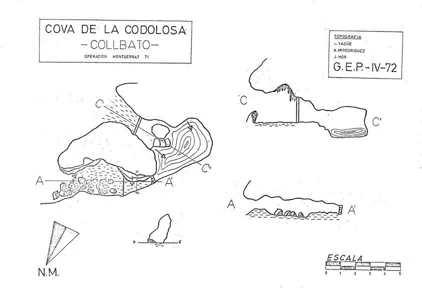 topo Cova de la Codolosa