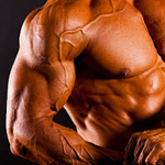 10 Best Muscle Building Ingredients
