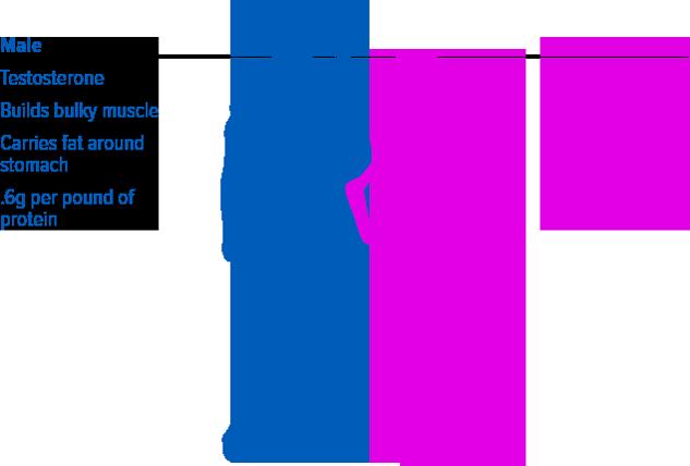 sameprotein-img2