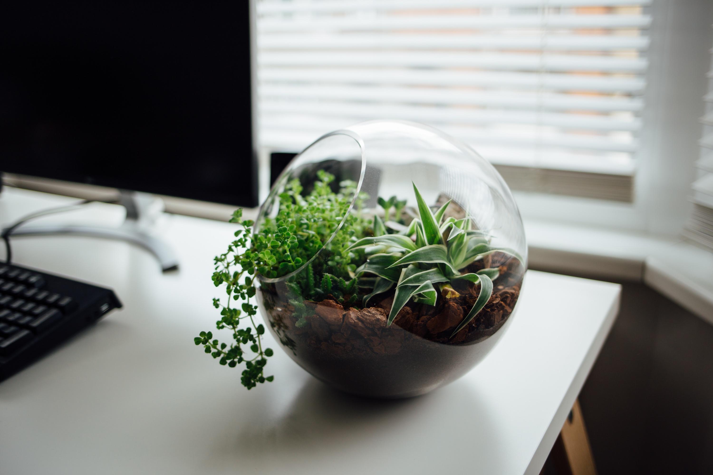 Logística Reversa: como inovar a sustentabilidade da sua empresa