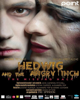 Hedwig and the Angry Inch: The Missing Half