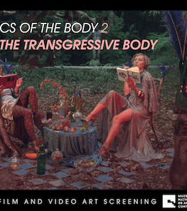 Politics of the Body 2: The Transgressive Body Proiecție BIEFF