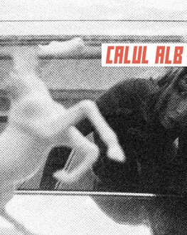 CALUL ALB / WHITE HORSE Short history of hate / Scurtă istorie a urii
