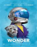Minunea / Wonder