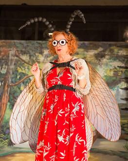 Insect (r. Jan Švankmajer) Gala de premiere BIEFF 2018