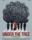 Under The Tree TIFF Sibiu