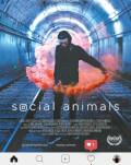 Animale sociale