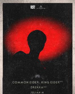 Common Eider, King Eider [us], Drekka [us], Julian M at Gazette