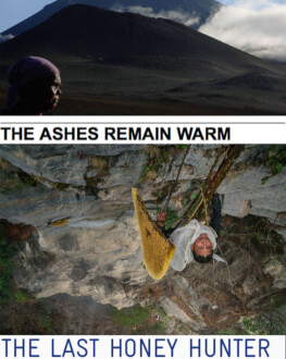 The Ashes Remain / Last Honey Hunter Retrospectiva Pelicam