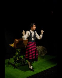 Madame Pové spune Povestea Turtița Rumenită MiniREACTOR