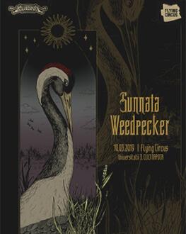 Live / Sunnata [POL], Weedpecker [POL]