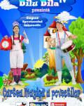 Cartea magica a povestilor cu Dilu si Dila