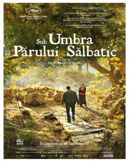 The Wild Pear Tree / Sub umbra părului sălbatic
