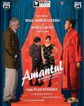 Amantul Deva Performing Arts Festival 2019