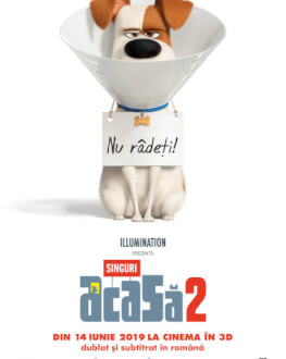 The Secret Life Of Pets 2 / Singuri Acasă 2