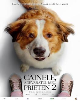 A Dog's Journey / Câinele, adevăratul meu prieten 2