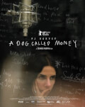PJ Harvey: A Dog Called Money DokStation 4 #DISCO