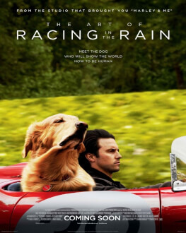The Art of Racing in the Rain / Povestea incredibilă a lui Enzo