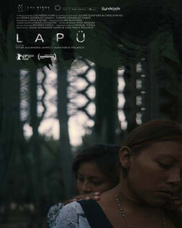 Lapü Astra Film Festival 2019 - International