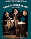 CINE A FURAT FULGII DE NEA? de Georgeta Lozinca