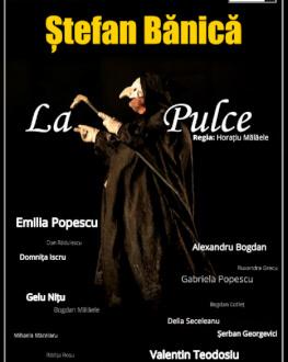 Cluj-Napoca: La Pulce
