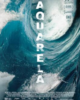 Aquarela, de Victor Kossakovsky BIEFF 2019