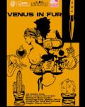 Venus in fur de David Ives