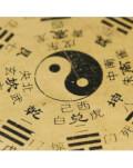 CURS Introducere in Conceptele de baza ale Medicinei Traditionale Chineze