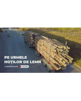 PE URMELE HOȚILOR DE LEMNE (RECORDER) Alpin Film Festival 2020