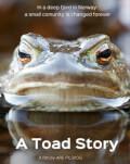 A TOAD STORY/ KUNSTEN Å LEGGJE SEG PADDEFLAT + REFLECTIONS/ SPEGLINGAR NORDIC FILM FESTIVAL 2020