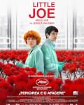 Micul Joe / Little Joe Eforie Colorat